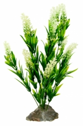 Lucky Reptile Borneo Grass with White Flowers 40cm